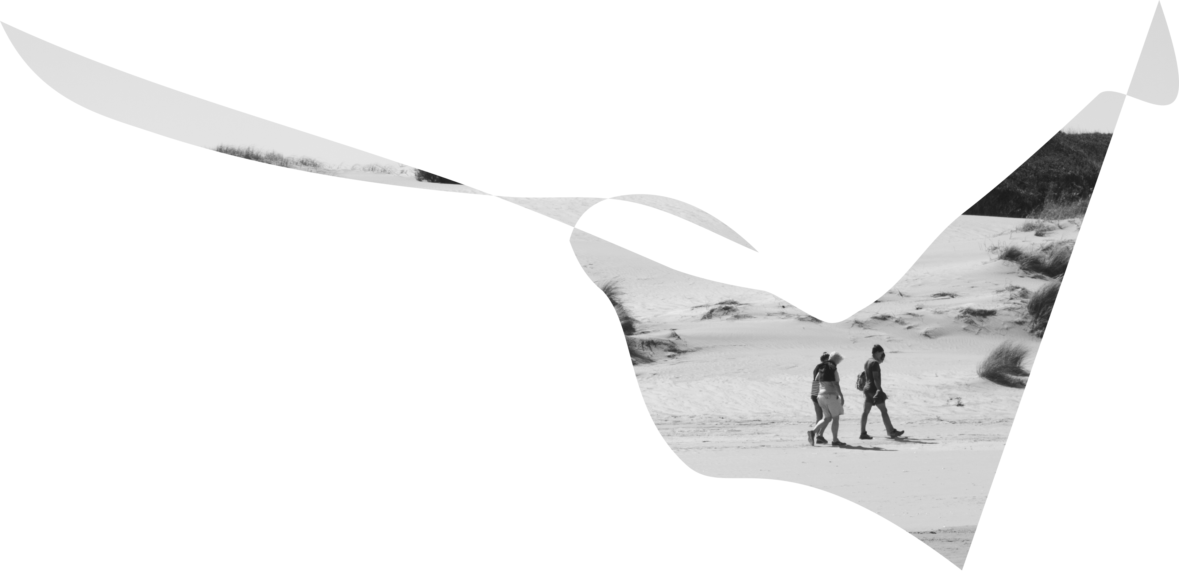 Headerfoto Dünen am Stand von Argentinien